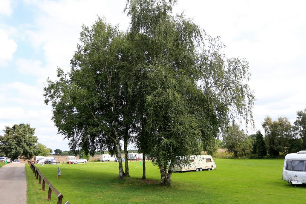 Budget Camp site Warrington